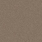 0-standardna-farba-ral-7006